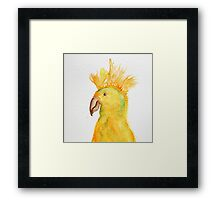 Parrot Perfect Mohawk Framed Print