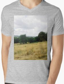 Landscape Mens V-Neck T-Shirt