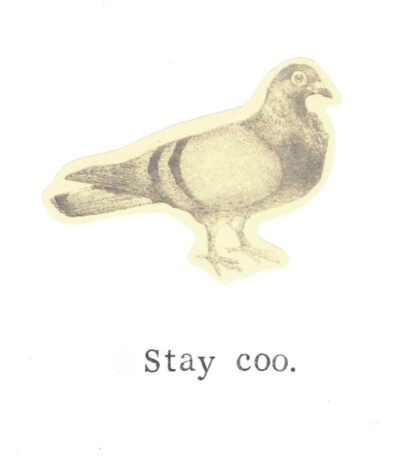 Stay Coo Vintage Pigeon Sticker