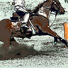 Champion Barrel Racer by NaturePrints