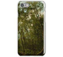 Wood Hall - Bowdown Woods iPhone Case/Skin