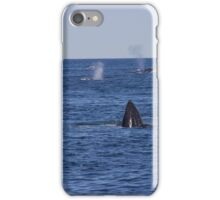 A Boston View 77 iPhone Case/Skin