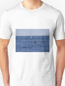 A Boston View 77 Unisex T-Shirt