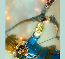 New Zelda Hyrule Warriors by Blankness