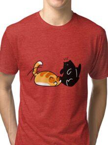 Playful Tabby and Black Cat Tri-blend T-Shirt
