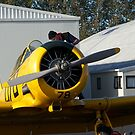 North American Harvard....check the oil and tyres please......! by Roy  Massicks