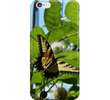 Swallowtail beauty iPhone Case/Skin