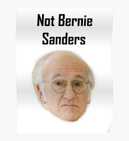 Not Bernie Sanders Poster