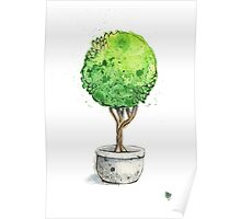 Watercolor Painting of a Green Topiary  Poster