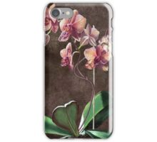 Kaleidoscope Phalaenopsis Orchid iPhone Case/Skin