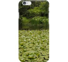 Lily Pads and Yellow Flags with Forest backdrop iPhone Case/Skin
