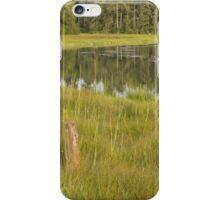 Evening sun, meandering river, marsh grass  iPhone Case/Skin