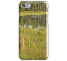 Evening sun, meandering river, marsh grass  iPhone Case/Skin