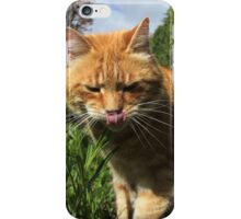 Ginger cat licking lips in garden iPhone Case/Skin