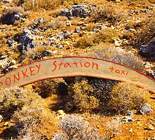 Donkey taxi station sign, island of Crete, Greece by Stanciuc