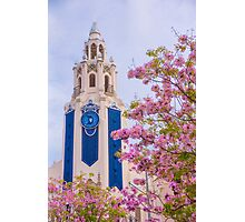 Carthay in Spring Photographic Print