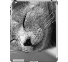 Gatto Jr iPad Case/Skin