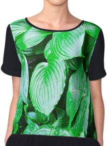large green leaves closeup Chiffon Top