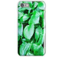 large green leaves closeup iPhone Case/Skin