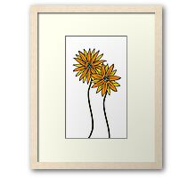 Two Daisies Coloured Orange with Transparent Background Framed Print