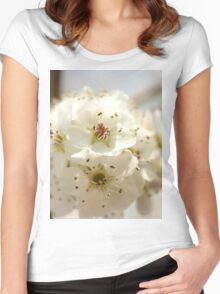 pear blossoms Women's Fitted Scoop T-Shirt
