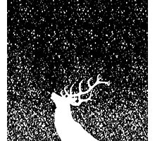 Oh Deer in B&W Photographic Print