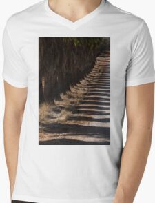 Avenue of palmtrees and their shadows Mens V-Neck T-Shirt