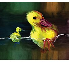 Ducks in a pond Photographic Print