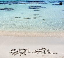 "The Word ""SOLEIL"" Written on Sand on a beautiful beach, with blue waves in background by Stanciuc"