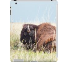 American Bison iPad Case/Skin