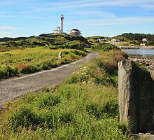 Nice Day for a Walk at Cape Forchu by Debbie  Roberts