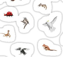 Australian animals Sticker