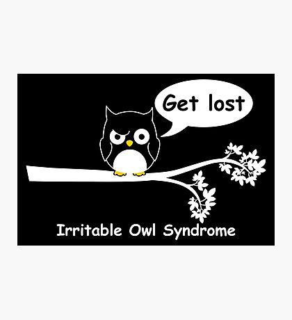 Irritable Owl syndrome Photographic Print