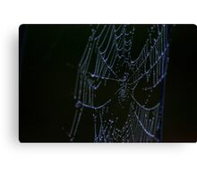 Morning Web on the Highway Canvas Print