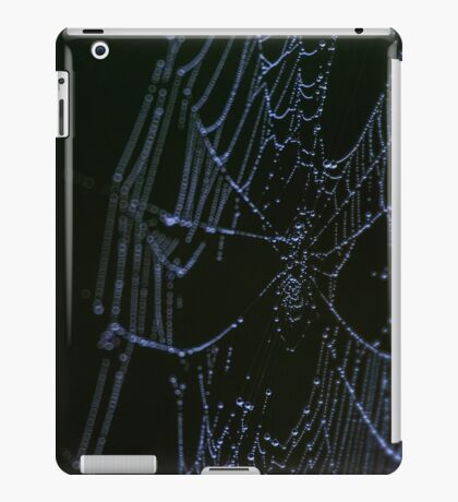 Morning Web on the Highway iPad Case/Skin