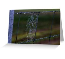 Fence Web in the Morning Dew Greeting Card