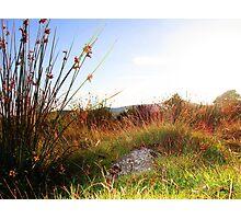British Landscape 2 Photographic Print