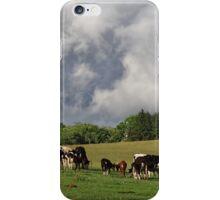 Lovely Livestock iPhone Case/Skin