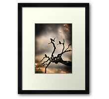 Dead Tree and Crows Framed Print