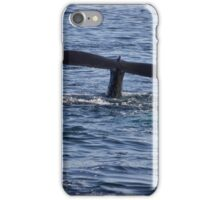 A Boston View 112 iPhone Case/Skin