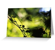 Tunnel of Light - Holly Wood Bokeh Greeting Card