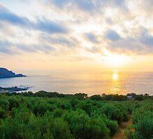 Wide view of a Cretan landscape, island of Crete, Greece by Stanciuc