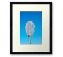 white feather on blue Framed Print