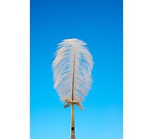 white feather on blue Photographic Print