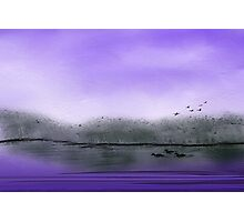 The Purple Colored Sky Photographic Print