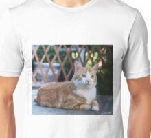 Brûlé couché Unisex T-Shirt