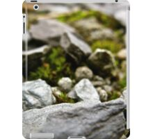 Macro Rocks iPad Case/Skin