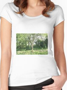 Summer tree Women's Fitted Scoop T-Shirt