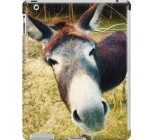 Curious Donkey iPad Case/Skin
