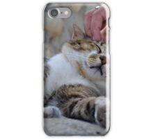 Afternoon Affection iPhone Case/Skin